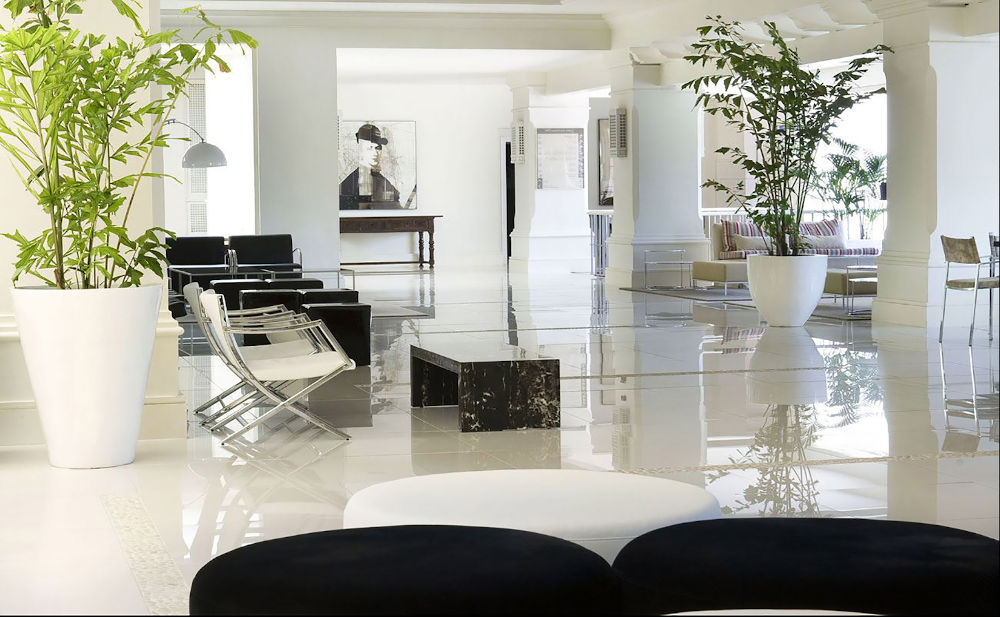 sala estilo Japandi con fondo blanco, elementos en negro y algunas plantas.
